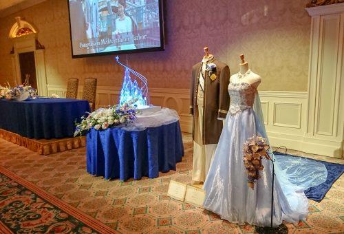 FTW アナと雪の女王モチーフのドレス